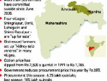 Villages for Sale in Vidarbh